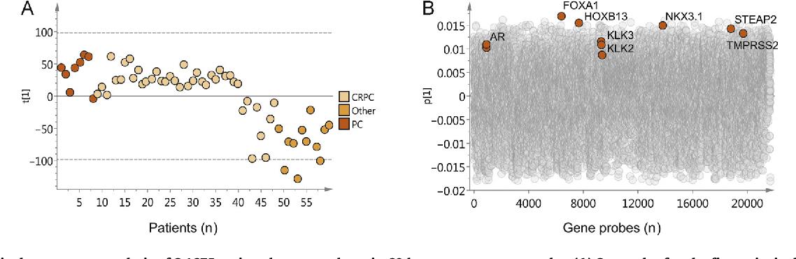 Subgroups Of Castration Resistant Prostate Cancer Bone Metastases