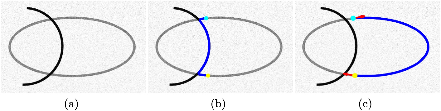 Figure 2 for Trajectory Grouping with Curvature Regularization for Tubular Structure Tracking