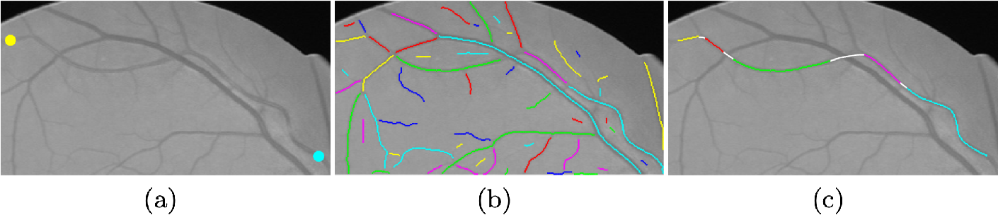Figure 3 for Trajectory Grouping with Curvature Regularization for Tubular Structure Tracking