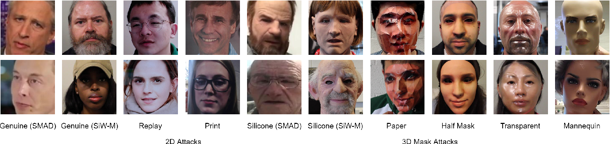 Figure 3 for MixNet for Generalized Face Presentation Attack Detection
