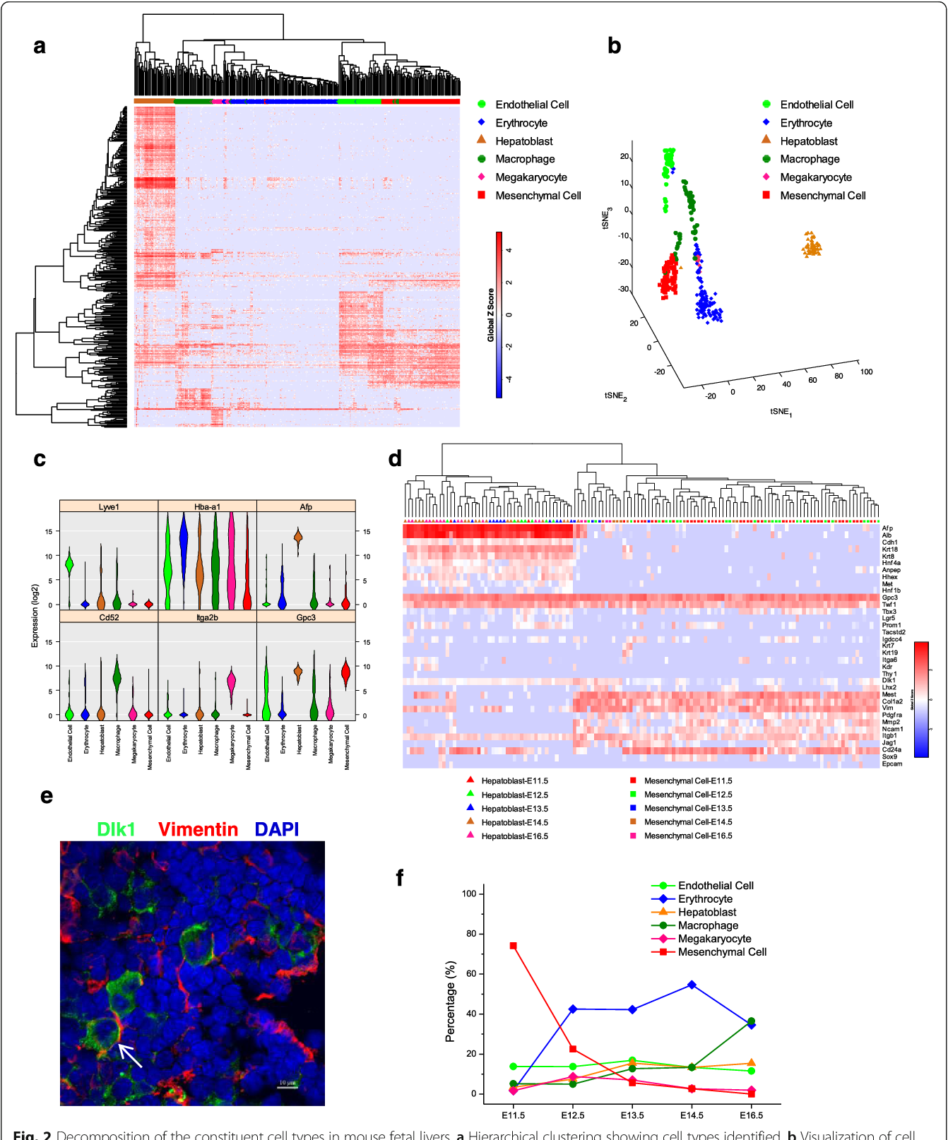 Figure 2 from Single-cell RNA-Seq analysis reveals dynamic