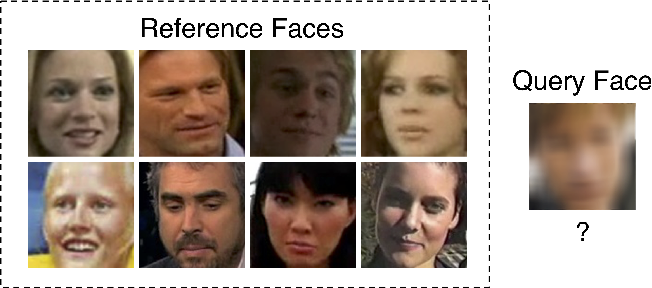Figure 1 for Robustness Analysis of Face Obscuration