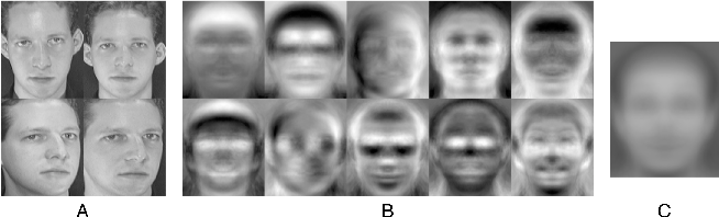 Figure 3 for Robustness Analysis of Face Obscuration