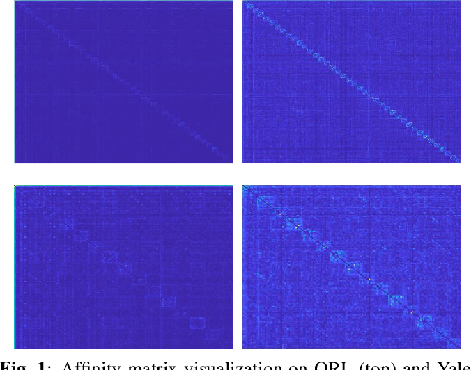 Figure 1 for Joint Learning of Self-Representation and Indicator for Multi-View Image Clustering