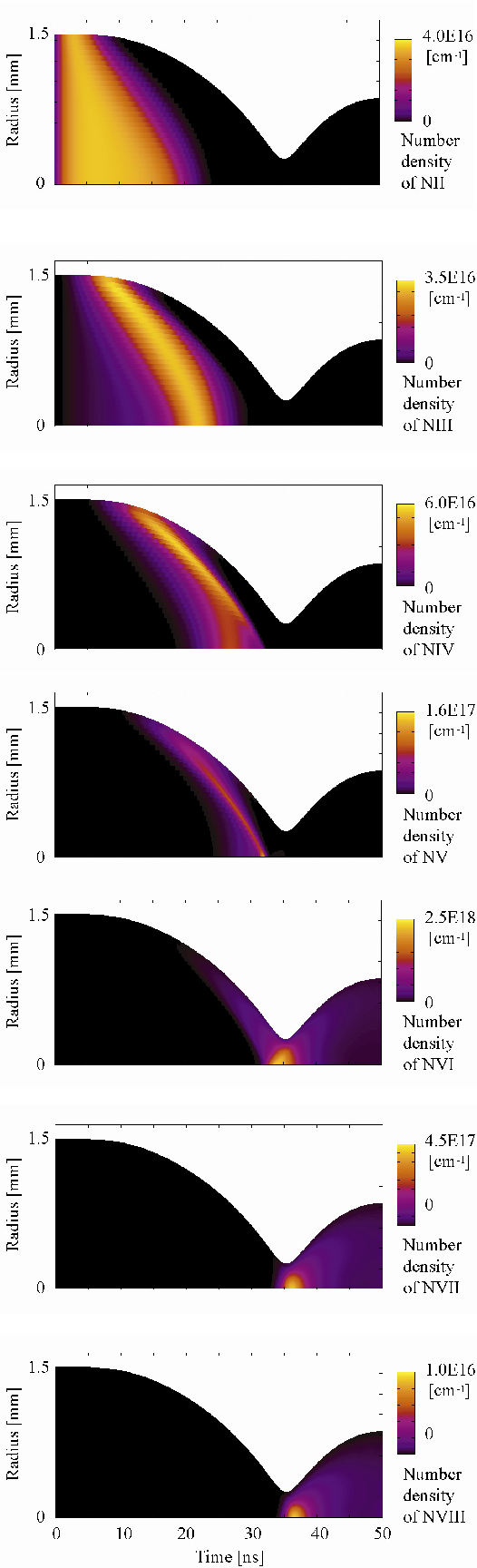 Fig. 4 Time evolution of respective nitrogen ion density distributions. Peak discharge current amplitude: 18 kA. Pulse width of discharge current: 70 ns. Initial number density of NII: 4 × 1016 cm-3.