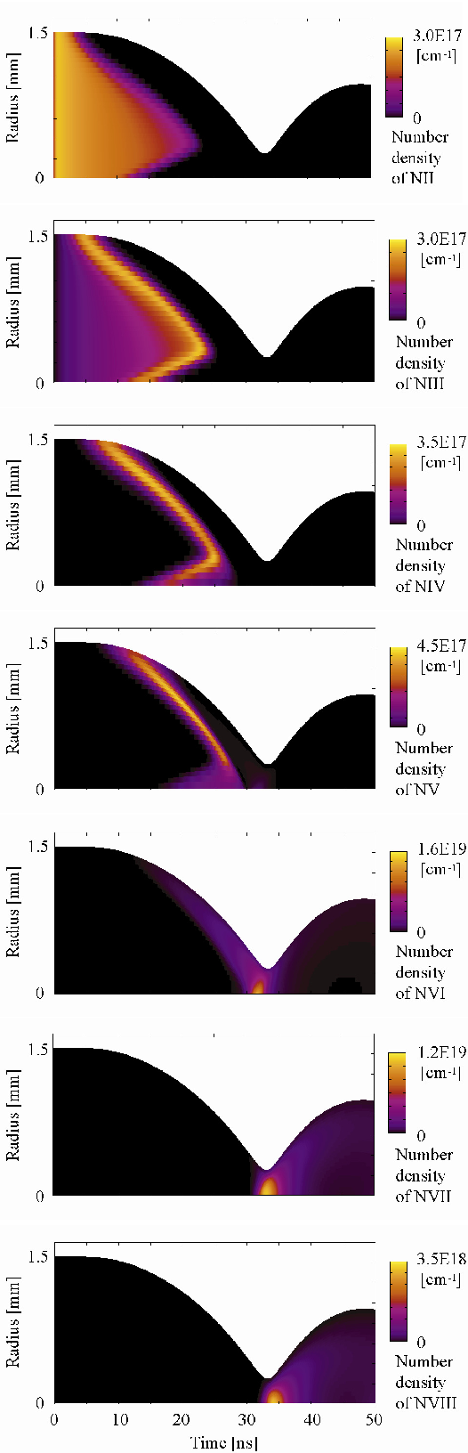 Fig. 6 Time evolution of respective nitrogen ion density distributions. Peak discharge current amplitude: 50 kA. Pulse width of discharge current: 70 ns. Initial number density of NII: 3 × 1017 cm-3 .