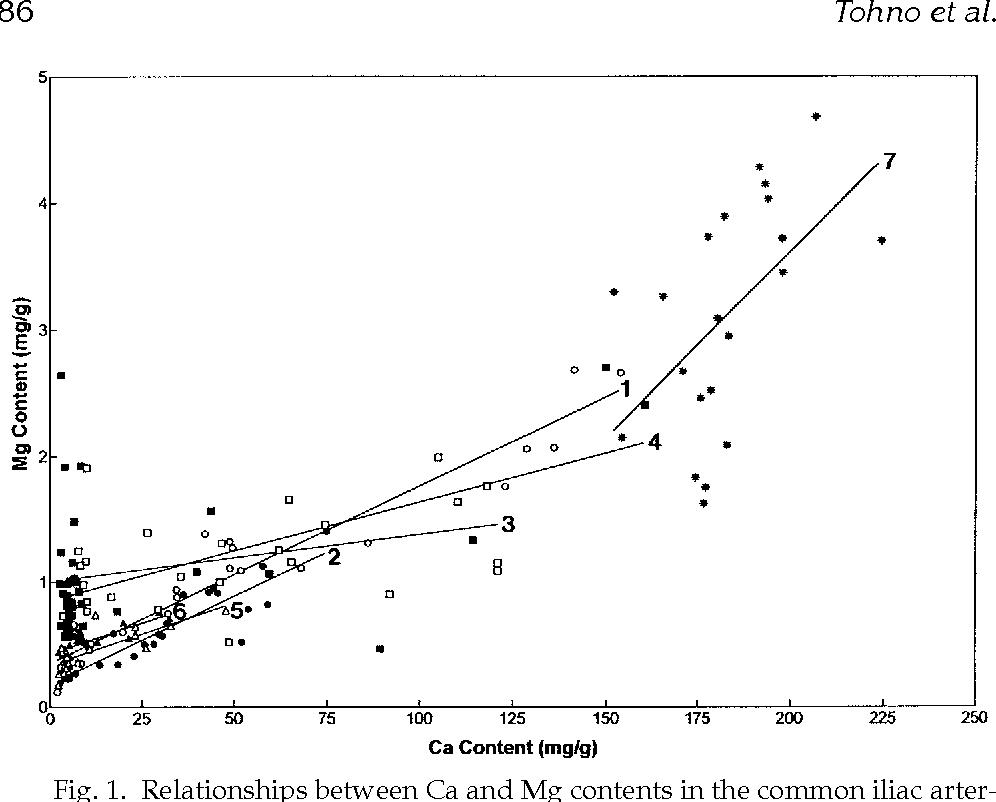 Accumulation Of Calcium In Human Common Iliac Artery Aortic Valve