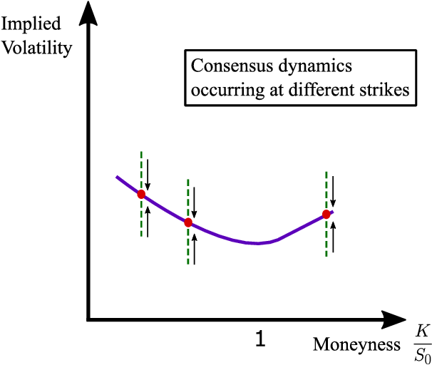 Figure 2 for Learning Agents in Black-Scholes Financial Markets: Consensus Dynamics and Volatility Smiles
