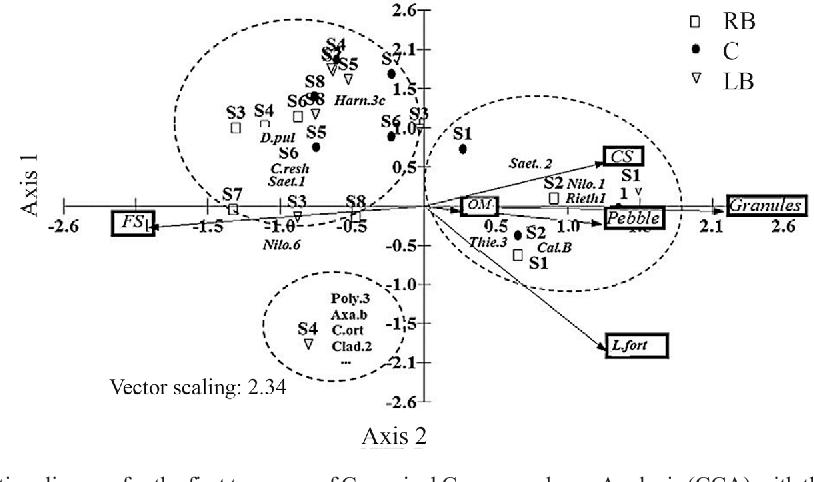 Figure 5 From Longitudinal Distribution Of Chironomidae Diptera