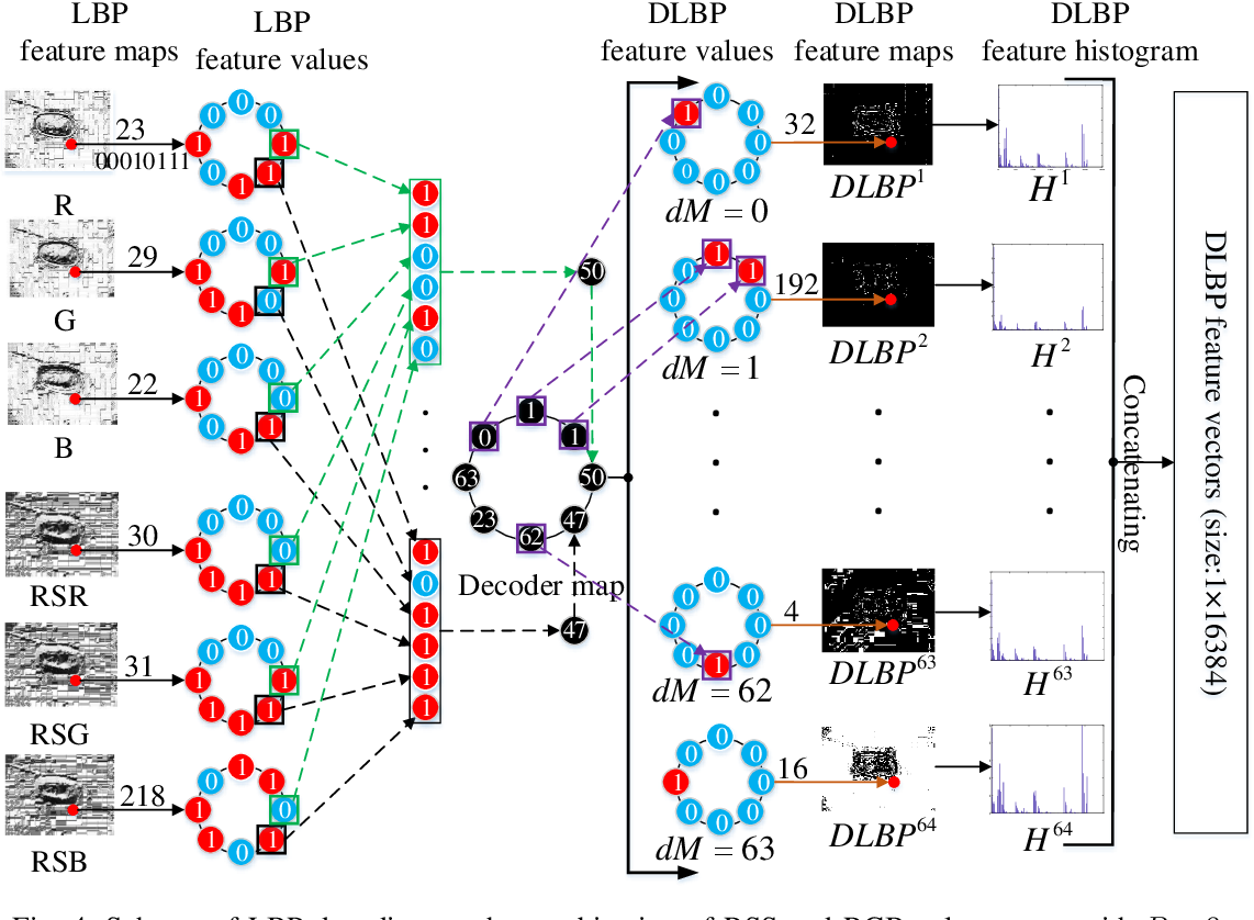 Figure 4 for Color-related Local Binary Pattern: A Learned Local Descriptor for Color Image Recognition