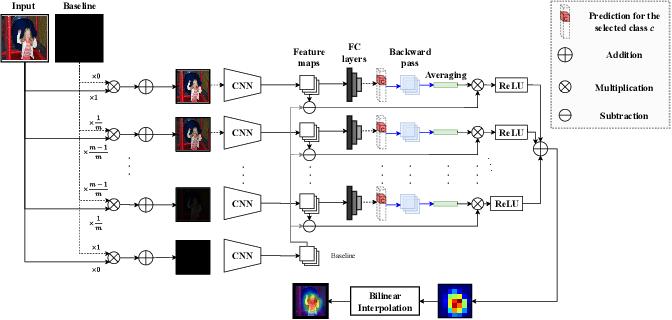 Figure 3 for Integrated Grad-CAM: Sensitivity-Aware Visual Explanation of Deep Convolutional Networks via Integrated Gradient-Based Scoring