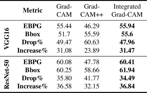 Figure 2 for Integrated Grad-CAM: Sensitivity-Aware Visual Explanation of Deep Convolutional Networks via Integrated Gradient-Based Scoring