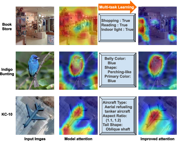 Figure 2 for Where is the Model Looking At?--Concentrate and Explain the Network Attention