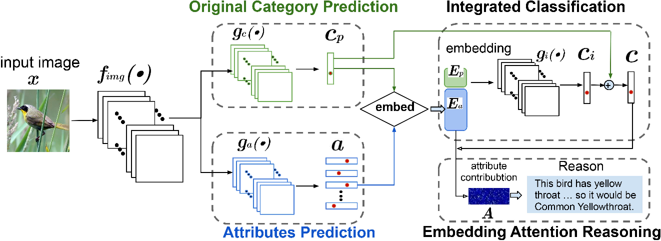 Figure 3 for Where is the Model Looking At?--Concentrate and Explain the Network Attention