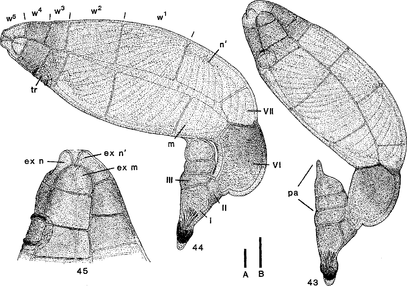 figure 43-45