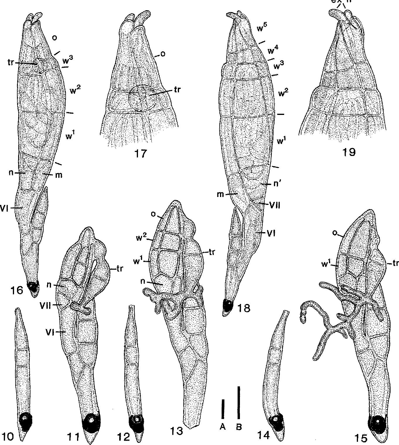 figure 10-19