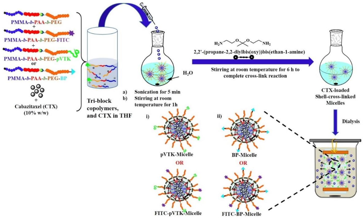 """Figure 4.3 A schematic drawing of the formulation of PMMA-b-PAA-b-PEG tri-block copolymer into """"smart"""" micelles i) M-pVTK or FITC tagged FITC-pVTK-Micelle and ii) M-BP or FITC-BPMicelle."""