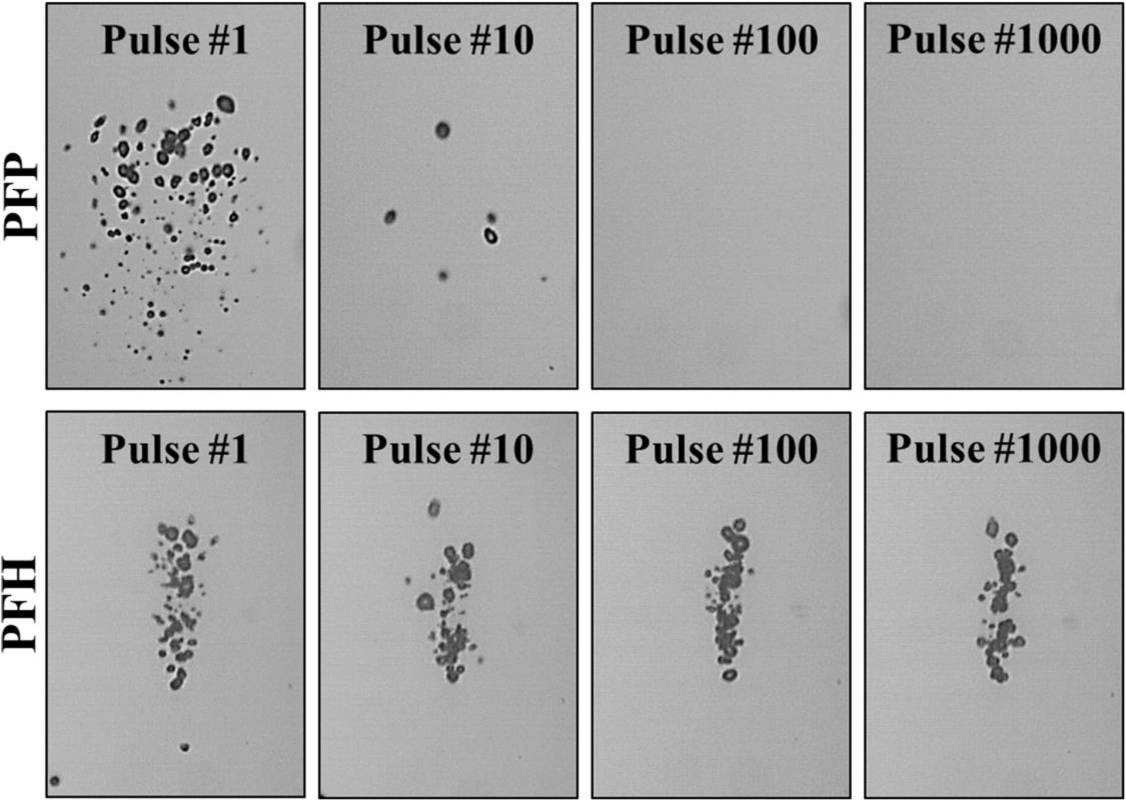 Figure B.7 Optical images show NMH bubbles produced by 500 kHz (p-=12.6 MPa) pulses at a single focal point in tissue phantoms containing PFP and PFH nanodroplets at a PRF of 1 Hz.