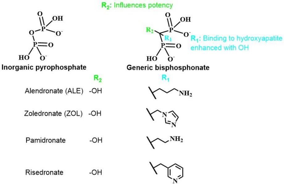 Figure 1.4 Basic structures of pyrophosphate and bisphosphonates.
