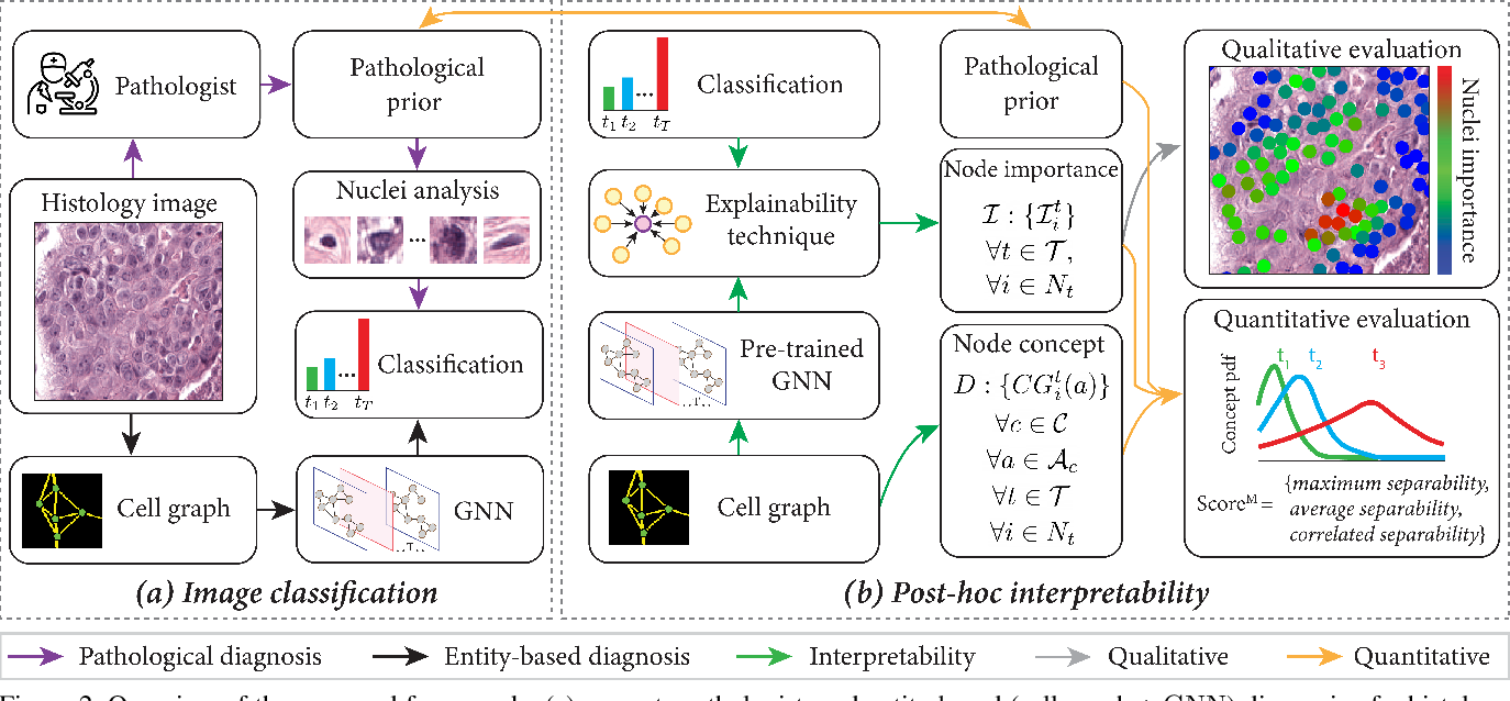Figure 3 for Quantifying Explainers of Graph Neural Networks in Computational Pathology