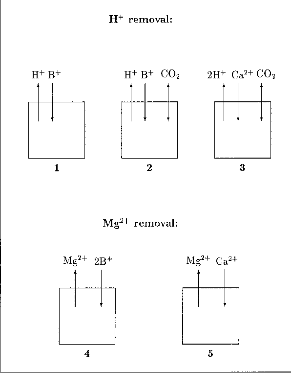 Comparison of two potential strategies of planktonic