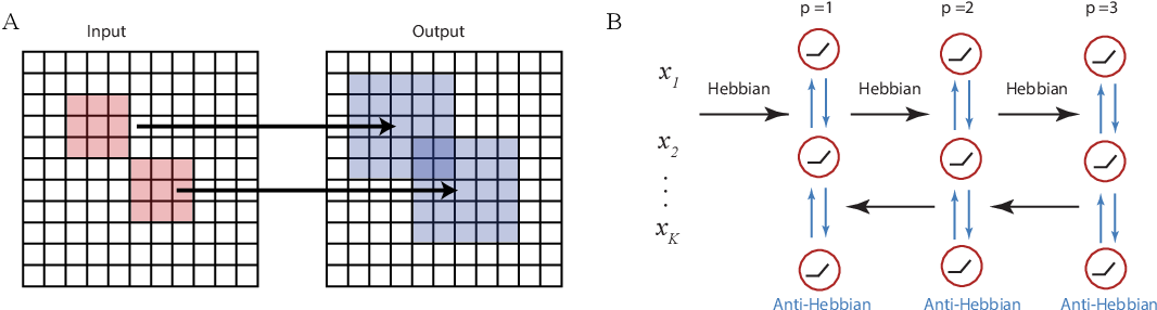 Figure 1 for Structured and Deep Similarity Matching via Structured and Deep Hebbian Networks