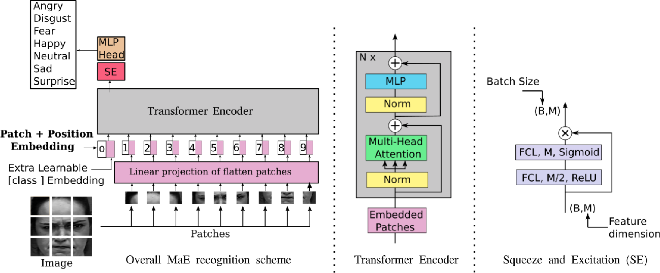 Figure 1 for Learning Vision Transformer with Squeeze and Excitation for Facial Expression Recognition