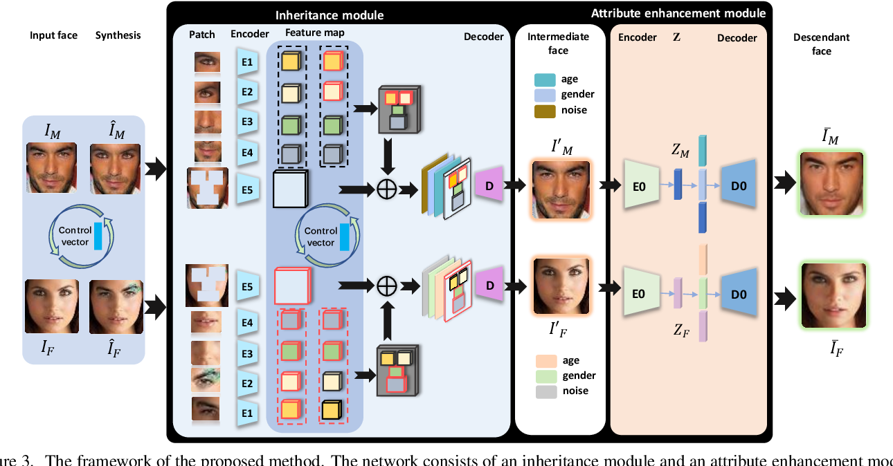 Figure 4 for Controllable Descendant Face Synthesis