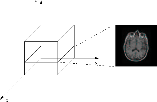 Fig. 1. Volumetric data. We call the third dimension, and assume that the images are the intersections of the volume with a plan orthogonal to axis.