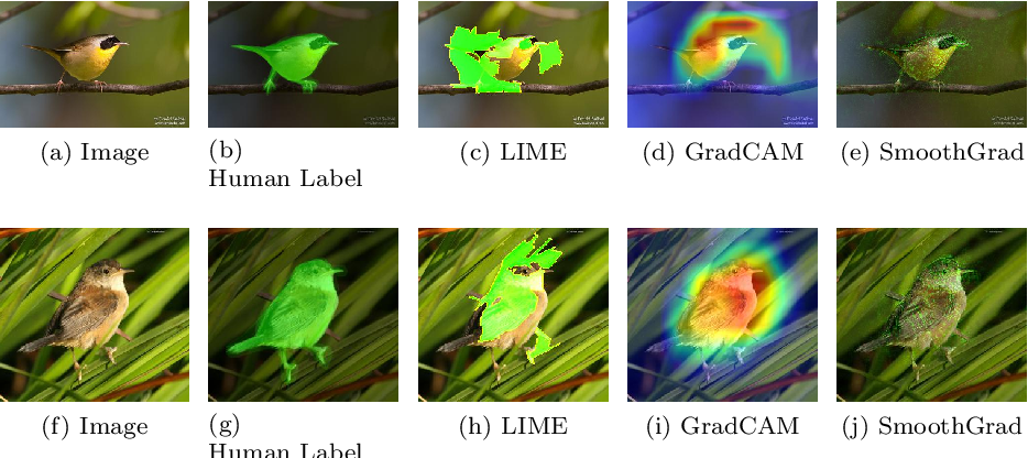 Figure 4 for Interpretable Deep Learning: Interpretations, Interpretability, Trustworthiness, and Beyond