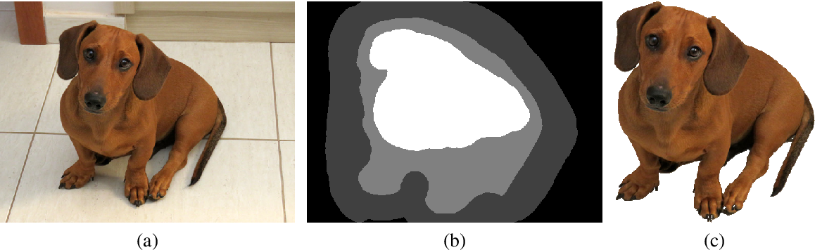 Figure 2 for Simple Interactive Image Segmentation using Label Propagation through kNN graphs