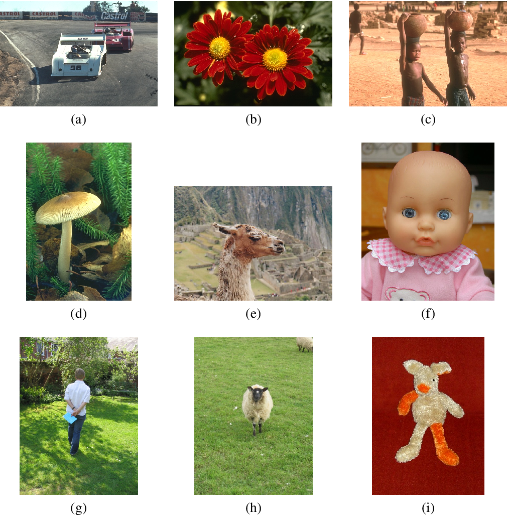 Figure 3 for Simple Interactive Image Segmentation using Label Propagation through kNN graphs