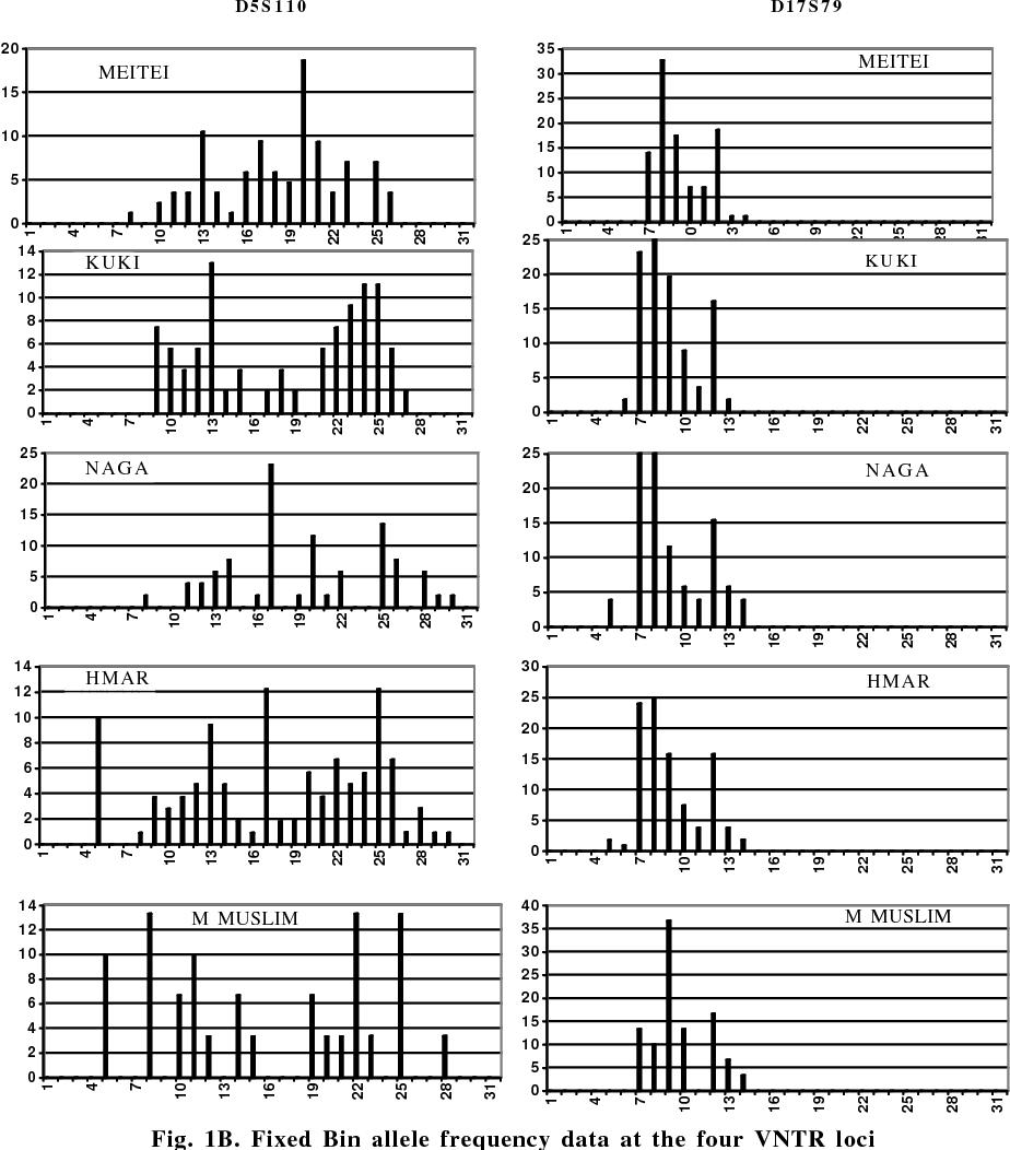 PDF] Genomic Diversity in North-East, India: Genetic Relationship