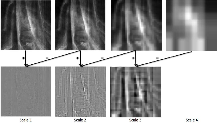 Figure 3 for Multi-modal dictionary learning for image separation with application in art investigation