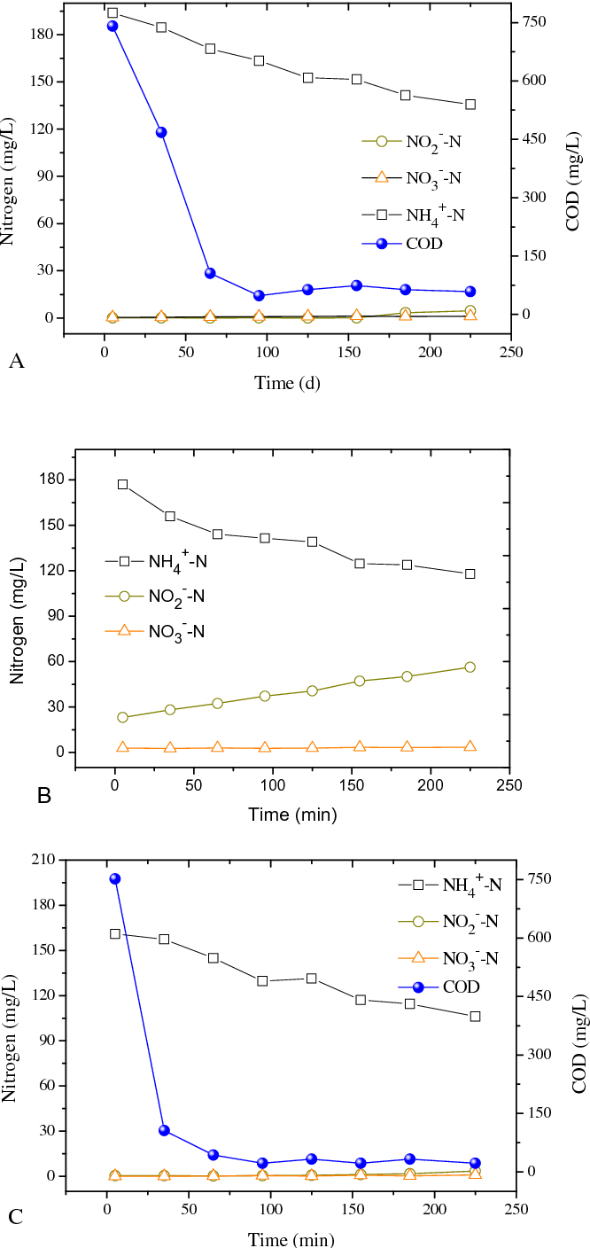 an examination of the characteristics and mechanism of aerobic granules The cultivation of aerobic granules in sbr by seeding anaerobic granular sludge was investigated using acetate-based synthetic wastewater morphological variation of granular sludge in the reactor was observed and results revealed that the inoculated anaerobic granules experienced a process of disintegration—recombination—growing up.