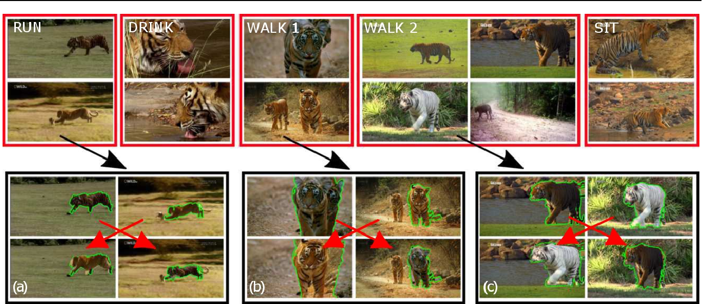 Figure 1 for Behavior Discovery and Alignment of Articulated Object Classes from Unstructured Video