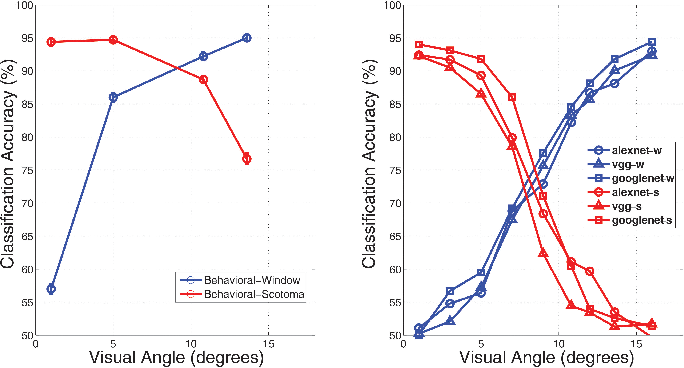 Figure 2 for Modeling the Contribution of Central Versus Peripheral Vision in Scene, Object, and Face Recognition