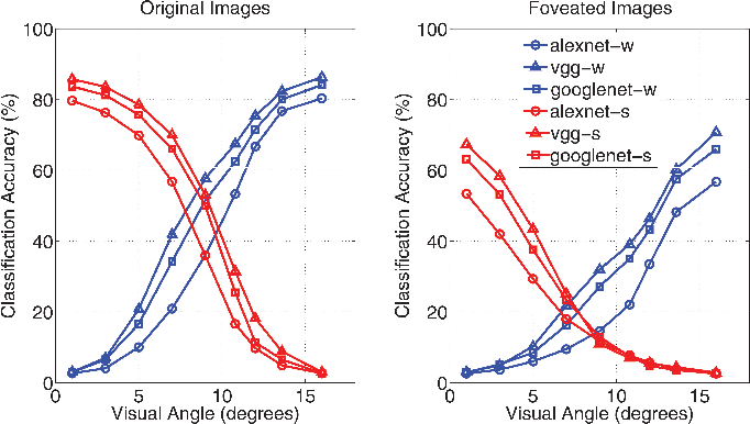 Figure 3 for Modeling the Contribution of Central Versus Peripheral Vision in Scene, Object, and Face Recognition