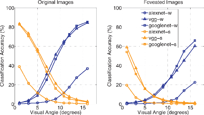 Figure 4 for Modeling the Contribution of Central Versus Peripheral Vision in Scene, Object, and Face Recognition