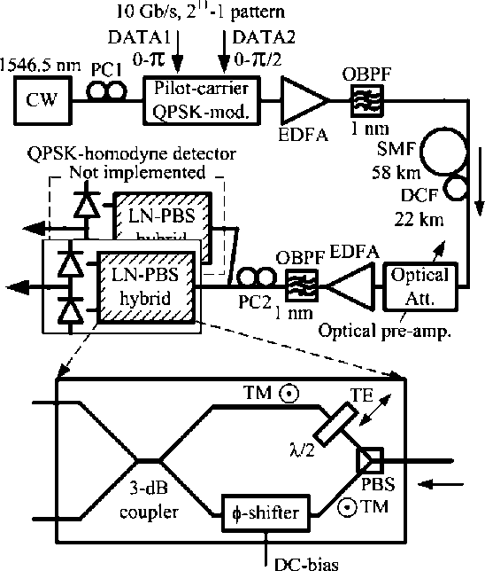 Linewidth Tolerant Qpsk Homodyne Transmission Using A Polarization
