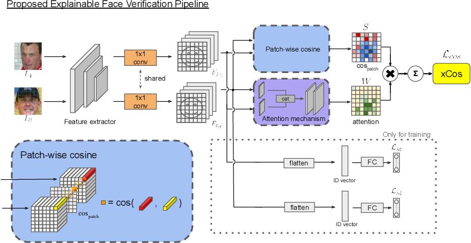 Figure 3 for xCos: An Explainable Cosine Metric for Face Verification Task