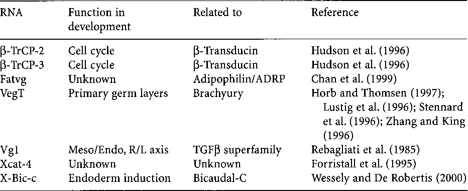 Cell Polarity and Subcellular RNA Localization (Results and Problems in Cell Differentiation)