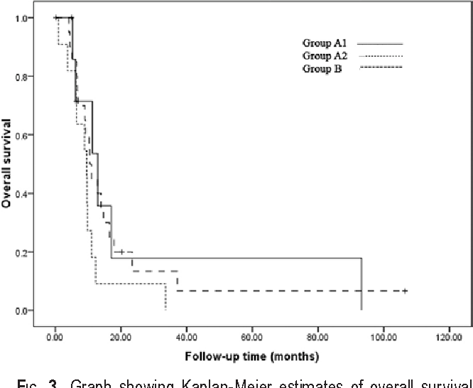 Fig. 3. Graph showing Kaplan-Meier estimates of overall survival after resection in patients who presented with new or recurrent lesions at diagnosis. Patients in Group A1 had multicentric glioblastoma, those in Group A2 had multifocal glioblastoma, and those in Group B had a solitary glioblastoma.