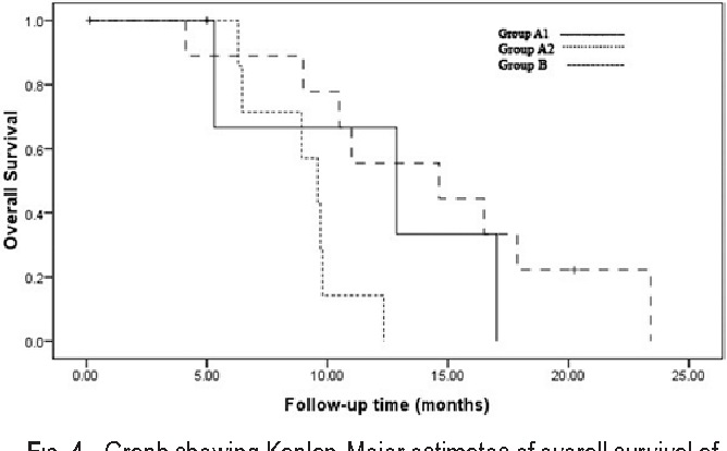 Fig. 4. Graph showing Kaplan-Meier estimates of overall survival after resection in patients who presented with new lesions at diagnosis.