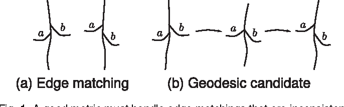 Figure 1 for Towards a theory of statistical tree-shape analysis