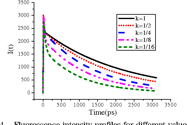 Fig. 4. Fluorescence intensity profiles for different values of fluorescent decay rate constant (k).