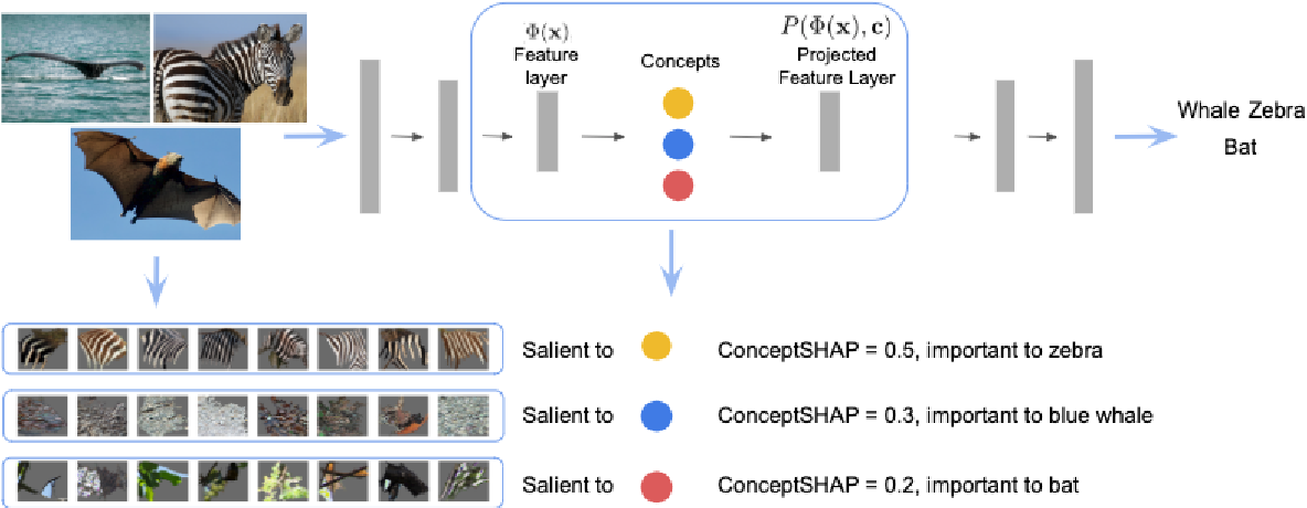 Figure 1 for On Concept-Based Explanations in Deep Neural Networks