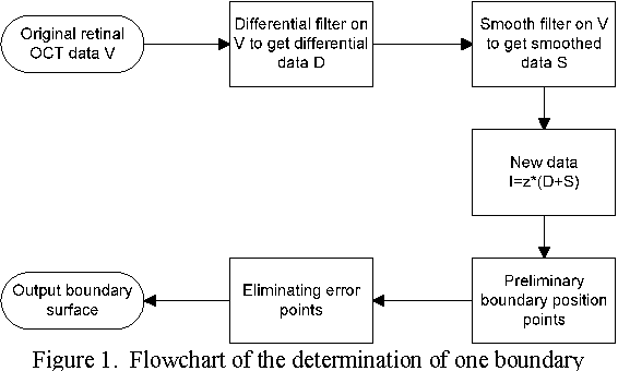 Figure 1 for A 3D Segmentation Method for Retinal Optical Coherence Tomography Volume Data