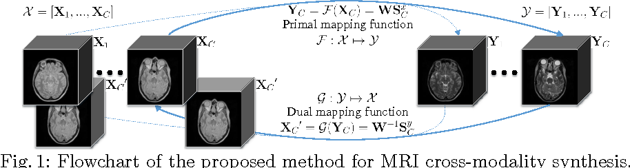 Figure 1 for DOTE: Dual cOnvolutional filTer lEarning for Super-Resolution and Cross-Modality Synthesis in MRI