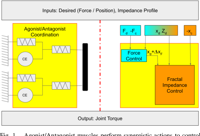 Figure 1 for Bio-mimetic Adaptive Force/Position Control Using Fractal Impedance